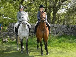 paseo a caballo casa rural la alcarria